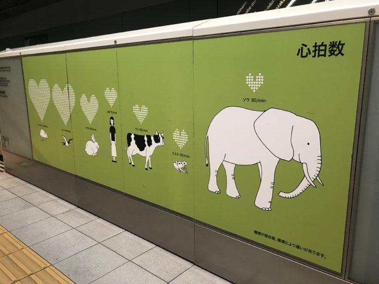 地下鉄六本松_7820